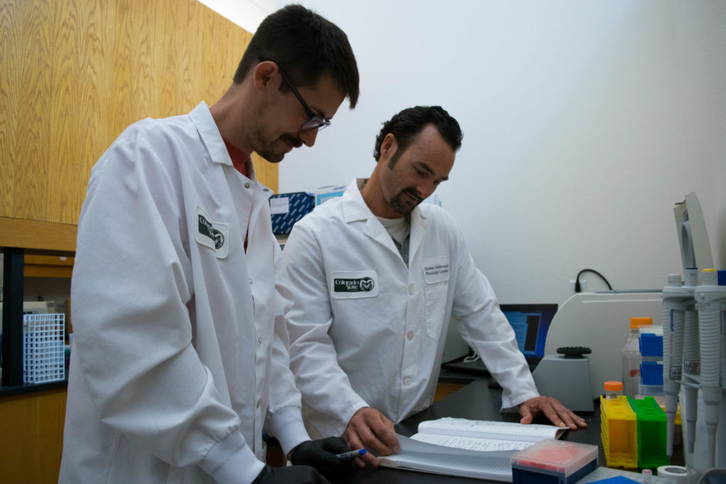 Frank Dinenno reviews his nots with a graduate researcher
