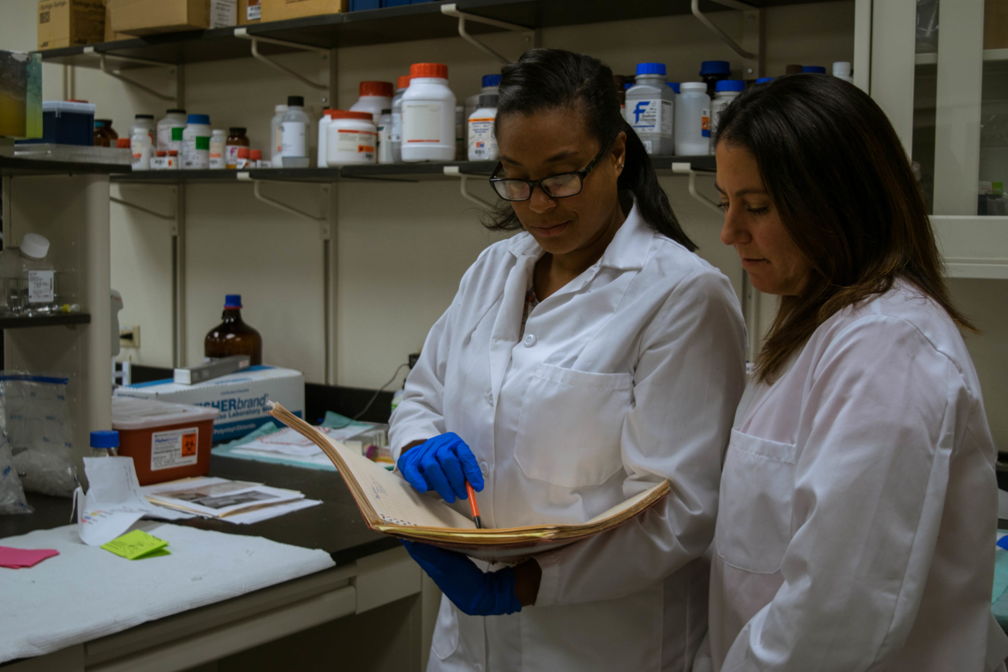 CSU researcher seeks to learn more about fat tissue disorder