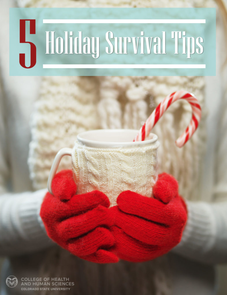 5 Holiday Survival Tips graphic