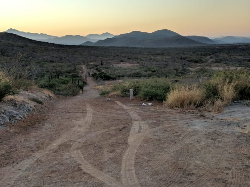 Morning mountains and a narrow dirt trail leading through the desert.