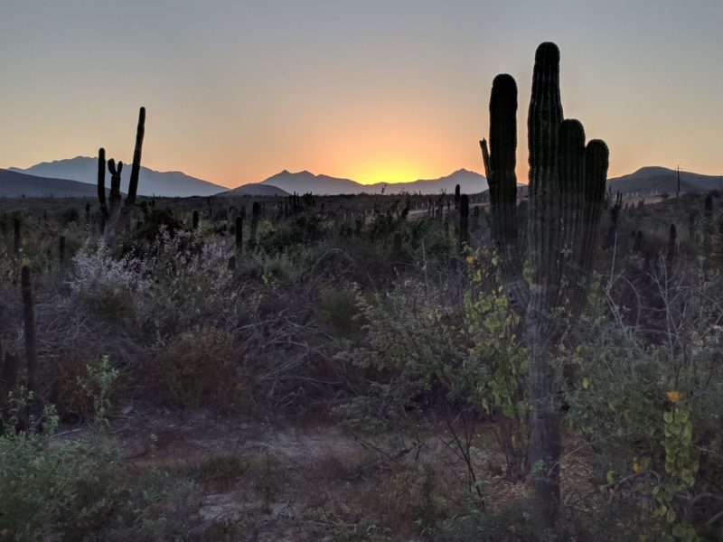 The sun setting over mountains and the desert.