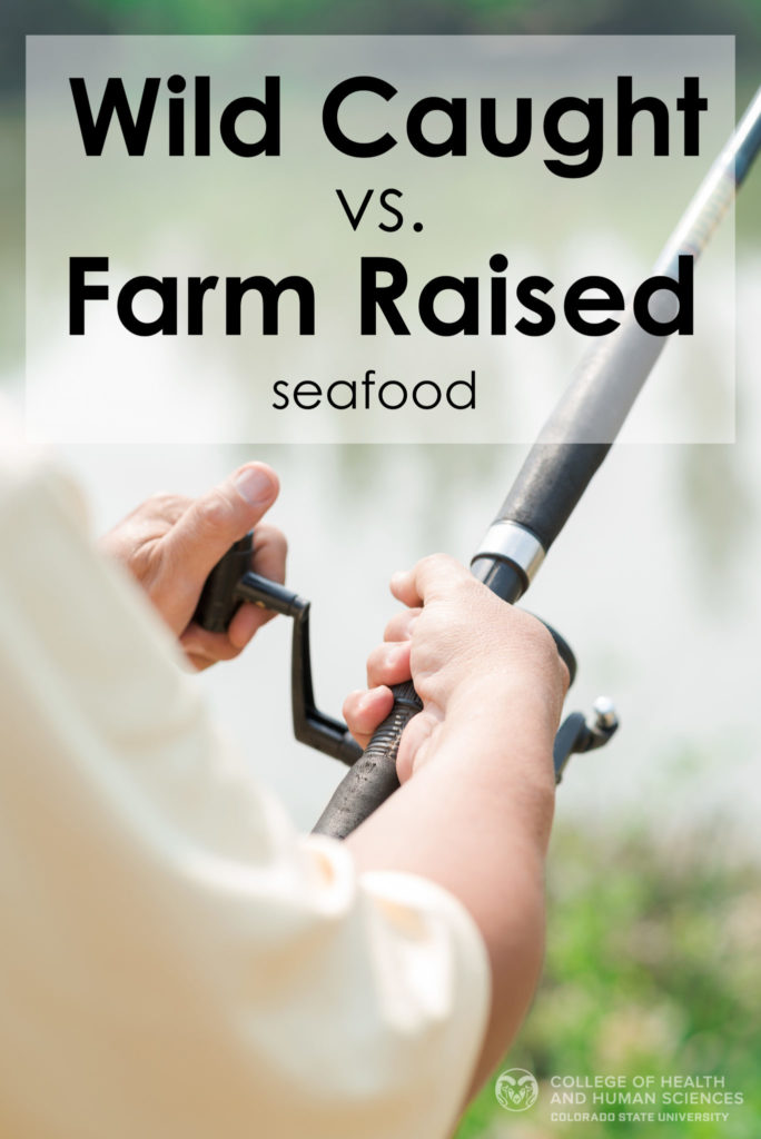 Wild caught vs. farm raised seafood