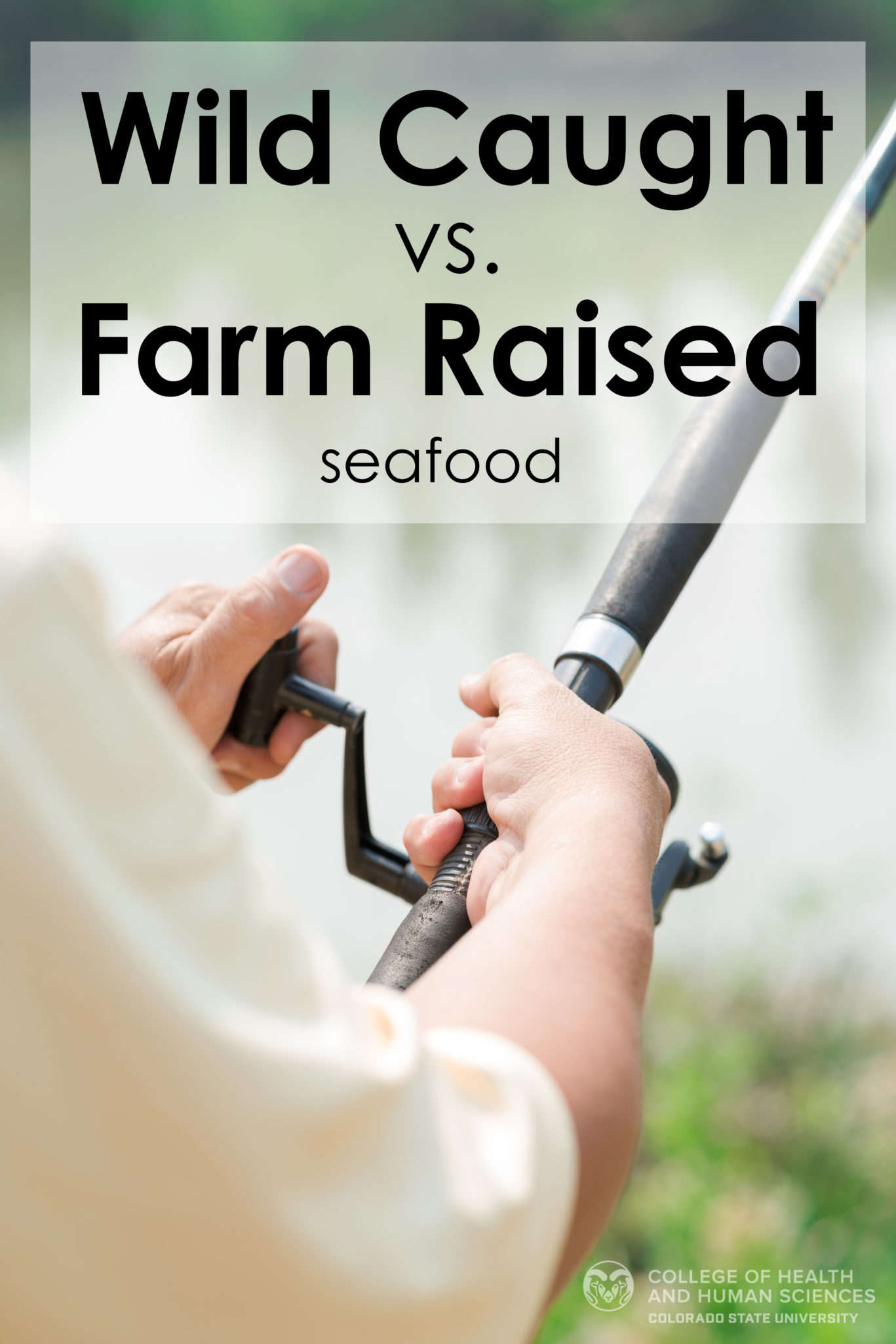 Wild caught vs  farm raised seafood | College of Health and