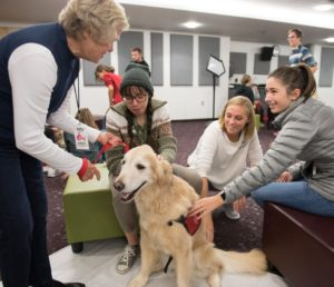 CSU students get a chance to de-stress with a volunteer team from HABIC (Human-Animal Bond In Colorado). October 16, 2018