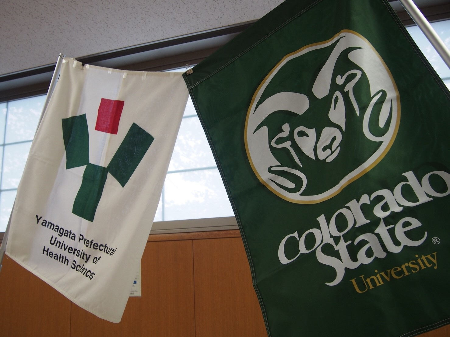 YPUHS and CSU school flags