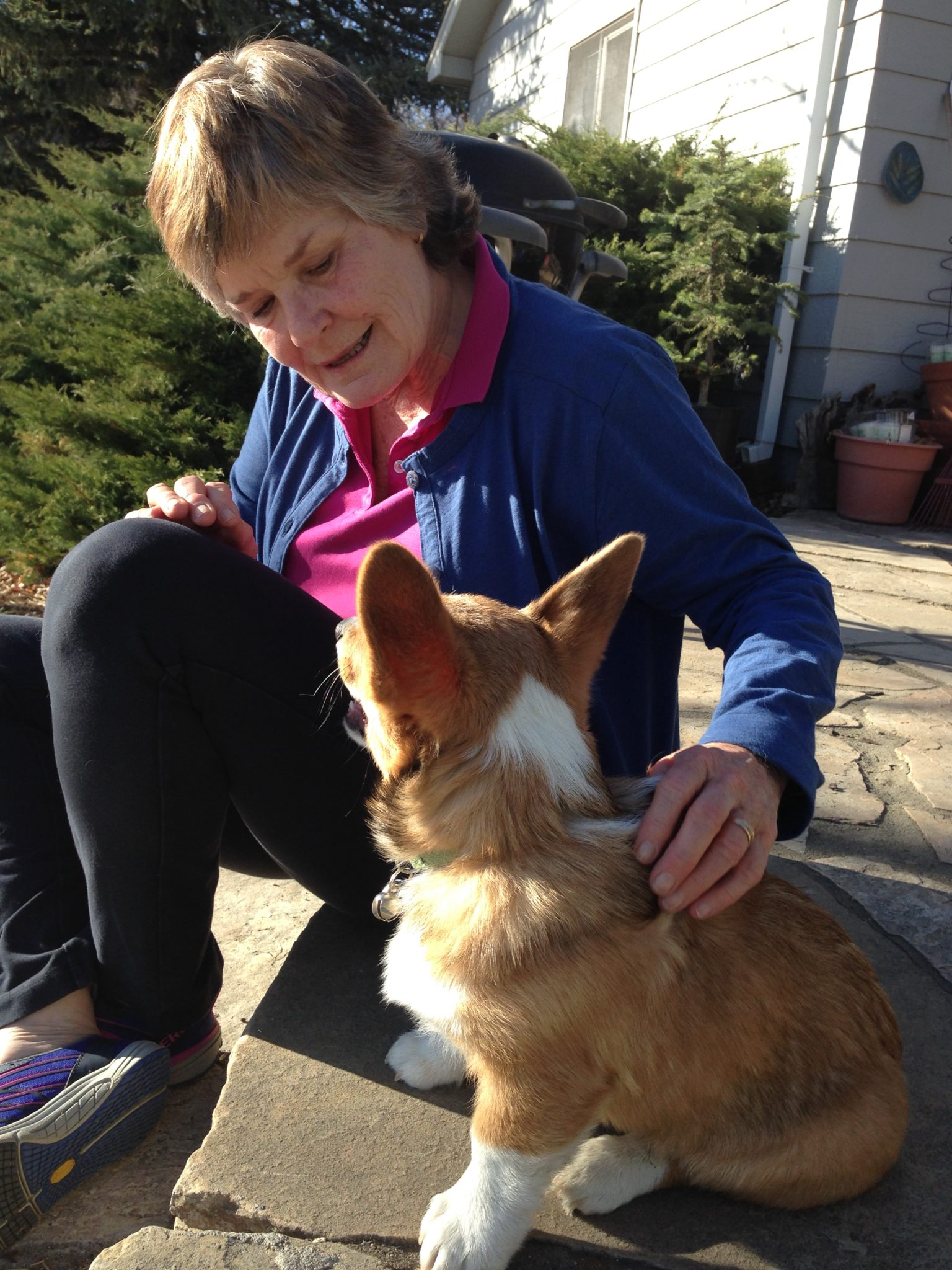 A woman smiles and pets a corgi.
