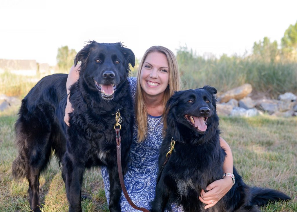 Welcome to HABIC - Human-Animal Bond in Colorado