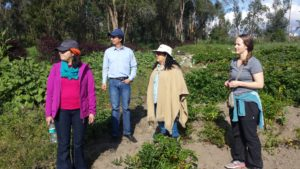 Group standing in an agricultural field.