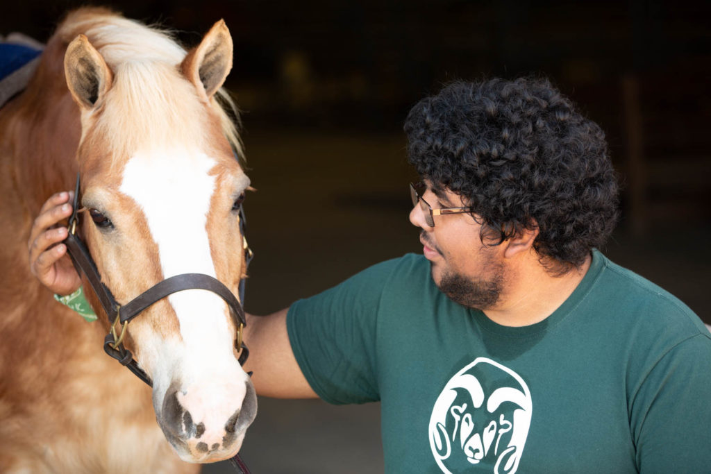 A volunteers stands next to a horse.