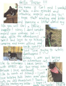 Handwritten letter from Carl the cat