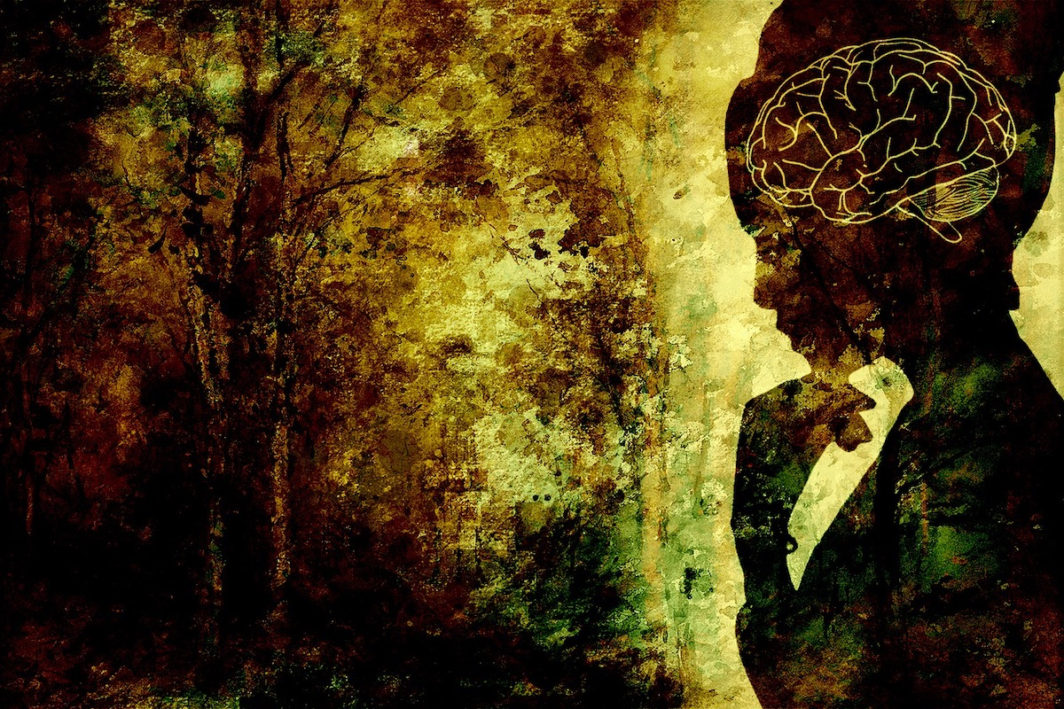Silhouette of woman in forest