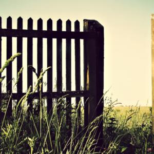 open gateway in a grassy field at sunrise