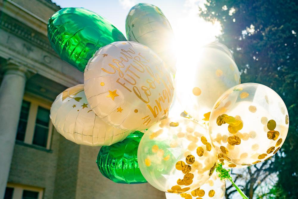graduation balloons in the sun