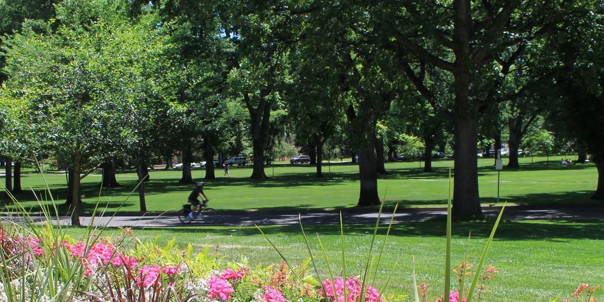 Oval in summertime