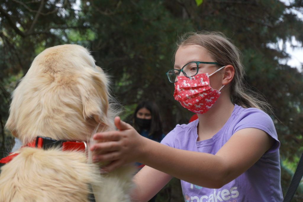 Girl petting a therapy dog
